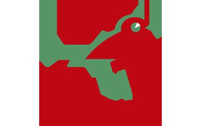 Nuevo Cliente: ALCAMPO